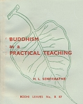 Buddhism as a Practical Teaching