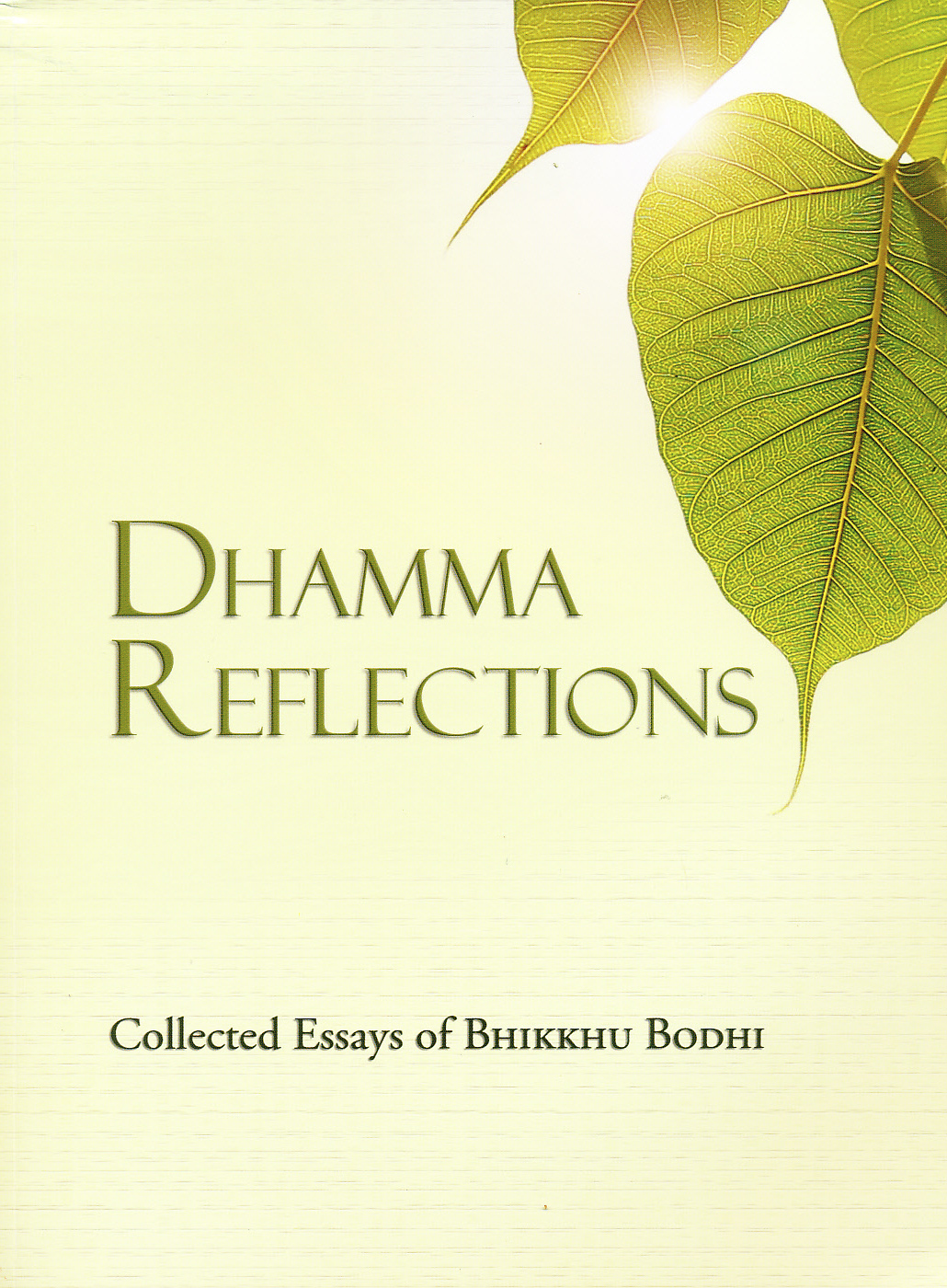 buddhism reflection paper Free buddhism papers, essays, and research papers my account your search returned over 400  in this paper, we are going to look a little more into buddhism.