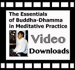 Essentials of Buddha-Dhamma <br />(Video Downloads and Streaming) ~ Multiple Languages
