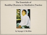 Essentials of Buddha Dhamma (Download and Streaming Audio) <br /><span>Vipassana</span>