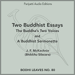 Two Buddhist Essays (MP3 Audiobook)