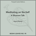 Meditating on No-Self (MP3 Audiobook)