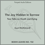 The Joy Hidden in Sorrow (MP3 Audiobook)