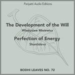 The Development of the Will and Perfection of Energy (MP3 Audiobook)