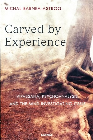 Carved by Experience<br /><span>Vipassana</span>