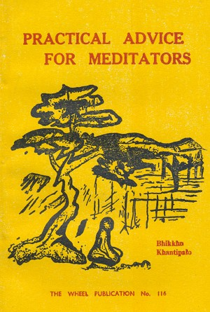 Practical Advice for Meditators