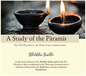 A Study of the Paramis