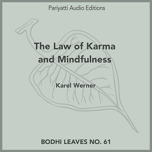The Law of Karma and Mindfulness (MP3 Audiobook)