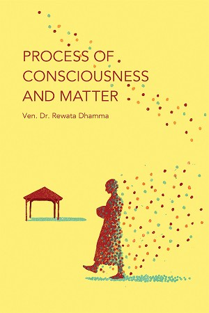 Process of Consciousness and Matter (PDF, ePub, Mobi eBooks)