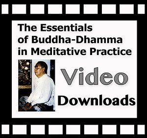 Essentials of Buddha-Dhamma (Video Downloads and Streaming ~ Multiple Languages) <br /><span>Vipassana</span>