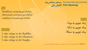 Gem Set in Gold - Farsi (Download and Streaming Video) <br /><span>Vipassana</span>
